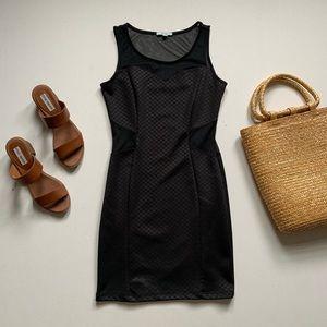 Soprano Black Mesh Mini Dress
